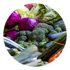 Powerslim dieet koolhydraatarm voor snel gezond afvallen